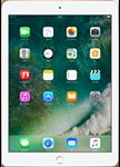 iPad Pro 9.7 inç