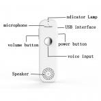 Pulomi TT Akıllı Tercüme Cihazı-Black