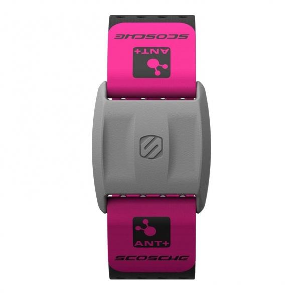 Scosche Rhythm Plus Nabız Monitörü Bileklik-Pink