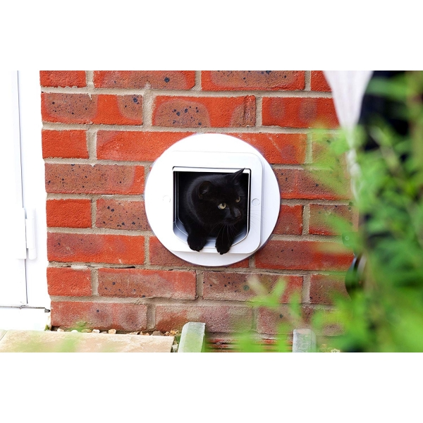 SureFlap Microchip Kedi İçin Akıllı Kapı