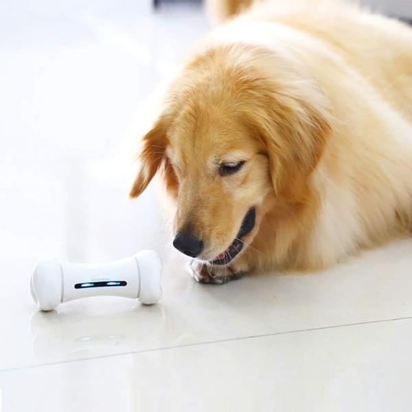 Wickedbone Evcil Hayvan İçin Akıllı İnteraktif Oyuncak-White