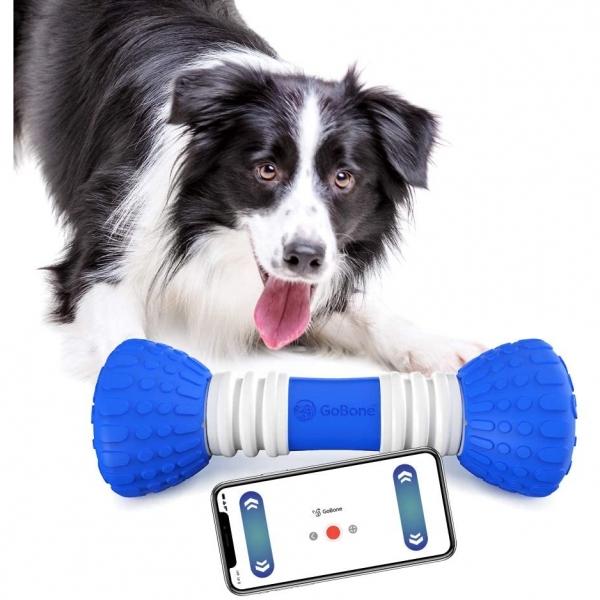 GoBone Akıllı Köpek Oyuncağı